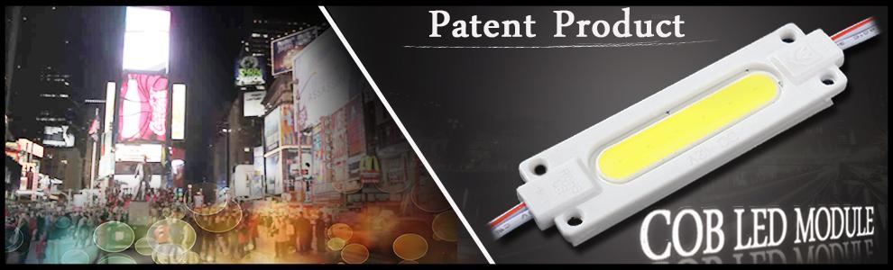 Zhongshan Shield King Lighting Technology Co., Ltd. - MODULE,LED MODULE
