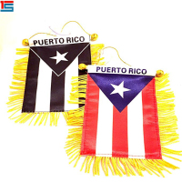 Custom size Puerto Rico mini car pennant flag for advertising