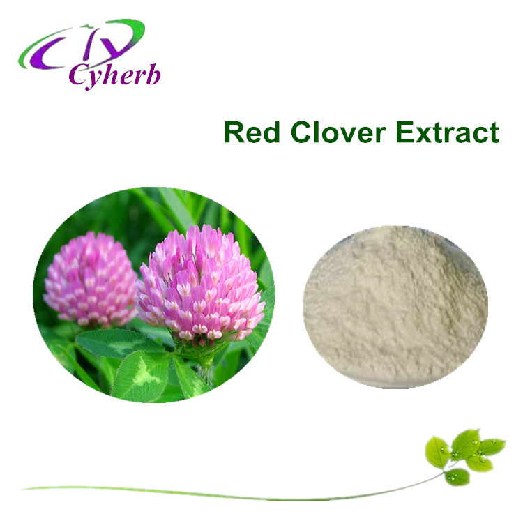 Biochanin A 98%, Red Clover extract, HPLC