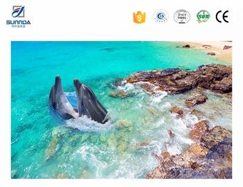 Cina nuovo disegno piastrelle per pavimenti delfino vita piastrelle
