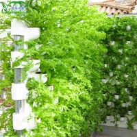 Hydroponic Growing Systems Hydroponic Greenhouse For Farm Planting
