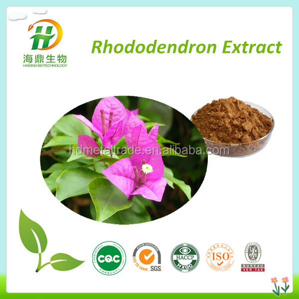 100% Natural Medicine & Food Grade Rhododendron Extract