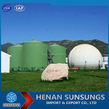 High power generating efficiency biogas plant construction