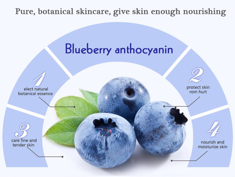 OEM bioaqua blueberry moisturizing cream nourishing smoothing sleeping mask