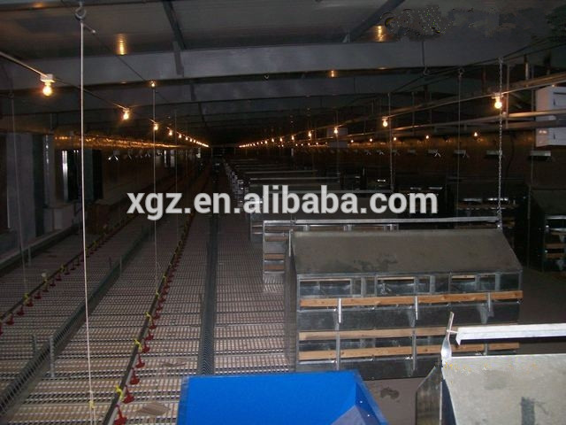 prefab two storey automatic breeder poultry house