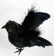 Halloween Artificial Feather Crow