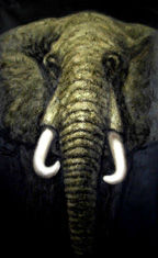 Animal Of Elephants With Canvas, Oil Or Acrylic Material For Wall Decoration oil painting