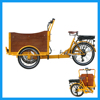 Family Used High Duty Pedelec Cargo Tricycle