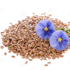 Wholesale supplier high quality organic bulk flax seed
