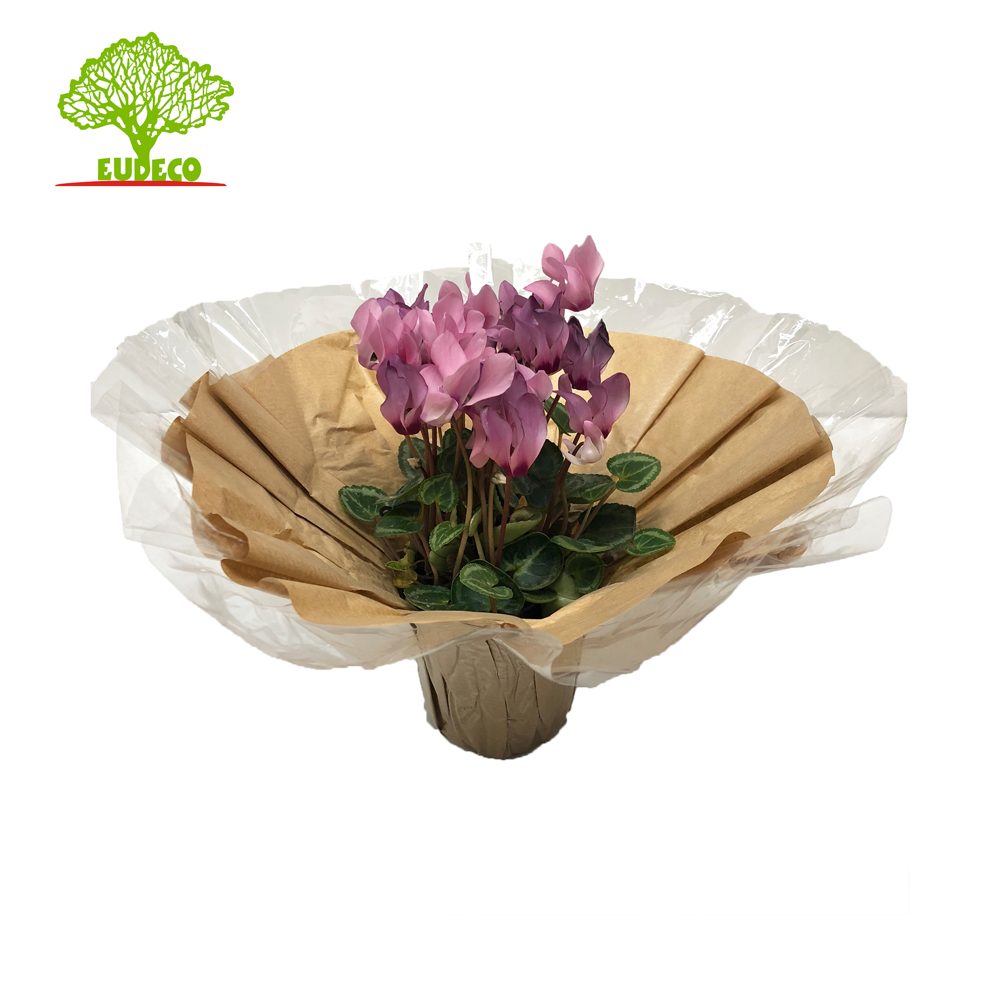 Kraft Bouquet Holder Con Bopp Bordo Deco