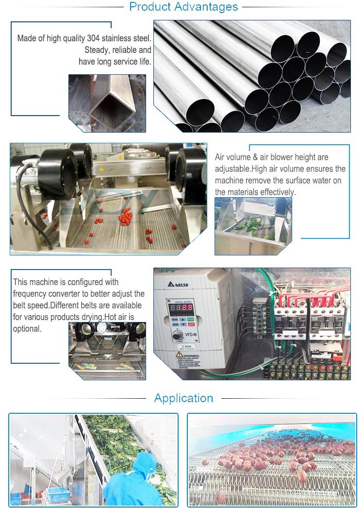 Industrial Fruit Drying Machine Vegetable Dryer