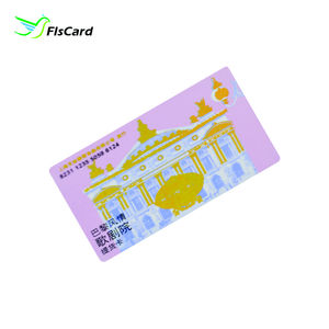 Sequence Number Printing PVC Card Gold Foil Plastic Magnetic Stripe Card