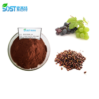 100 Percent Top Quality Grape Juice/Seed Powder Extract