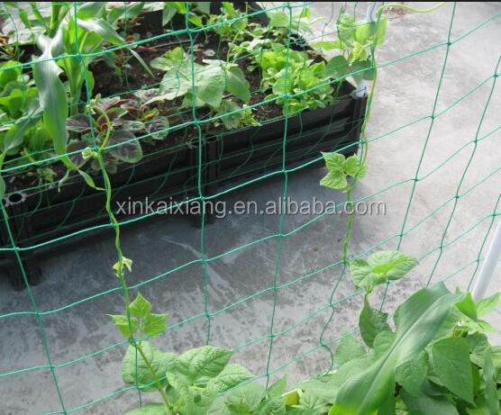 Nylon Filet Plantes soutient Grape Vine Support Support Escalade fruits Maille 10*10cm