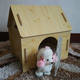 Eco-friendly wooden pet house and cage for small cat / dog
