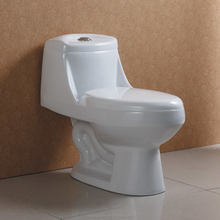 North America Single Hole S trap 300mm One Piece Toilet