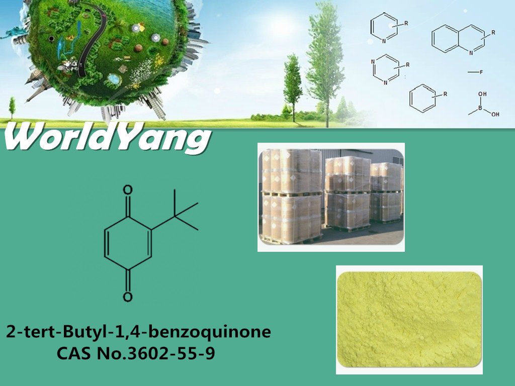 Worldyang 3602-55-9 2-tert-Butyl-1,4-benzoquinone Fine Dyestuff Intermediates and Pharmaceutical Intermediates