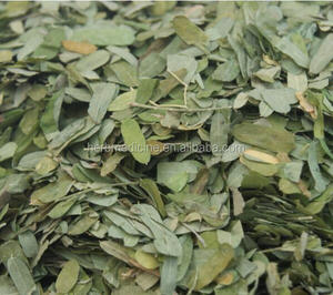 Abrus Cantoniensis Hance Abrus Cantoniensis Hance Suppliers And