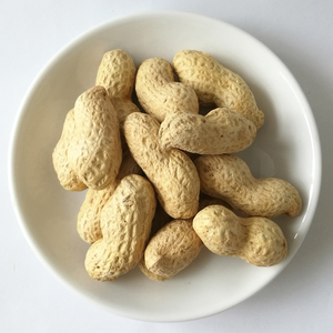 Dry roasted&salted organic roasted peanuts in shell