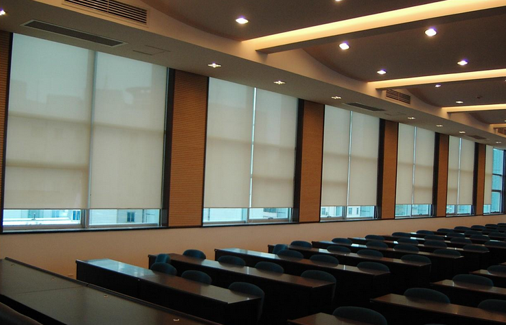 Motorized Blinds/remote Control Blackout Fabric Window Roller ...