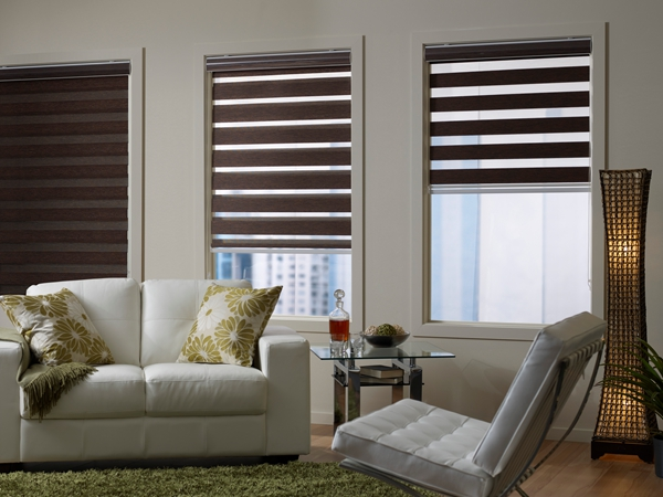 New Indoor Home Window Day Night Zebra Roller Blinds Shades Curtains