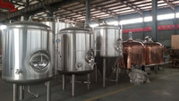 beer brewery system 7BBL brite tank jacked and cooled with glycol