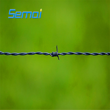 Hot Sale Galvanized Weight Barbed Wire(ISO9001 Factory)
