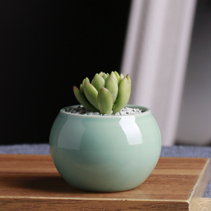 APHACATOP Creative light green small round succulent flower plant pot PLANT POTS