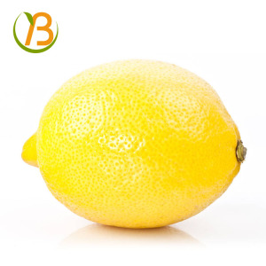 egyptian organic seedless yellow fresh lemon