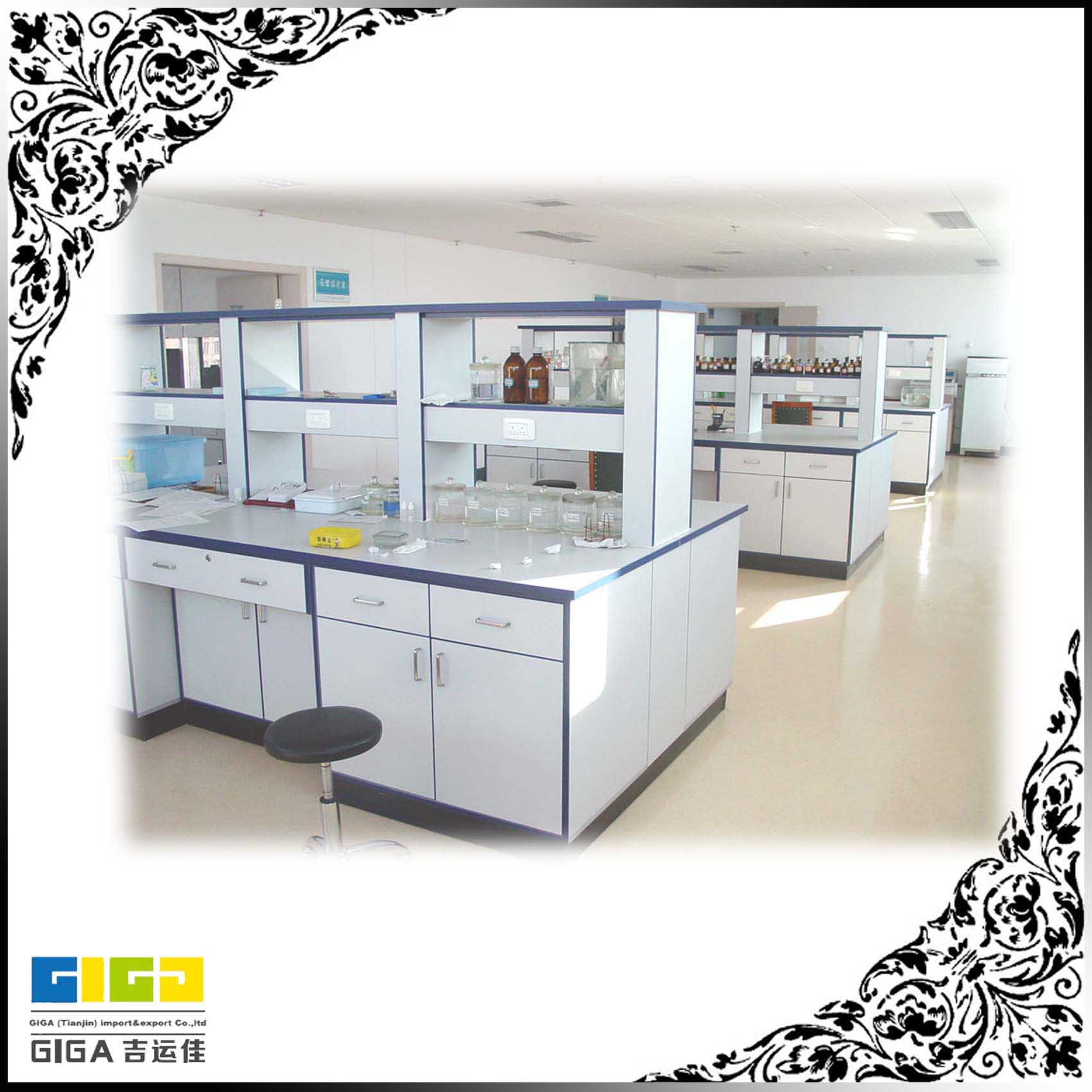 Giga China All Steel Or Wooden Microbiology Laboratory