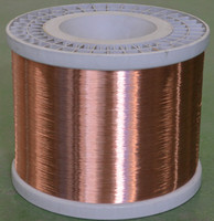CCAM of 25 micron stainless steel wire mesh 2015
