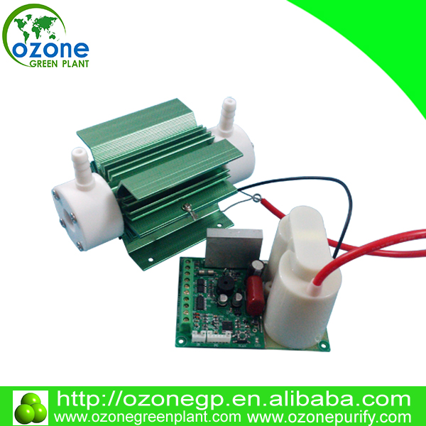 4g/hr 220V 110V 12V Air cooling battery powered ozone generators parts for mini ozone generator