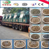 biomass briquette machine for sale