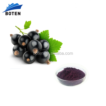 Boten Blackcurrant Extract/ Black currant Extract