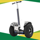 World -Level Chinese chariot custom heel light 63 V 19 inch Tire off road and city electric scooter Es6/Es6+