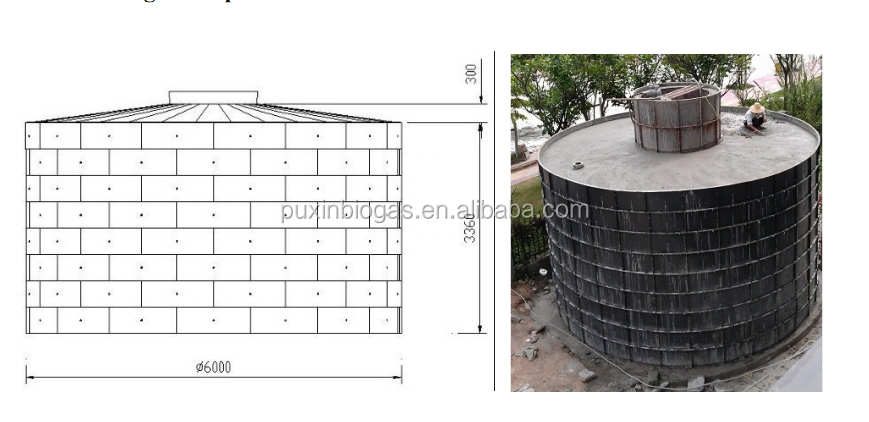 Puxin Biogas Plant For Pig Farm With 200 Pigs For Biogas ...