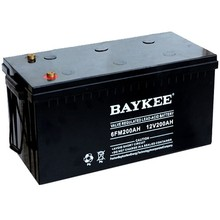 Baykee FM series mini 12v rechargeable battery 100Ah