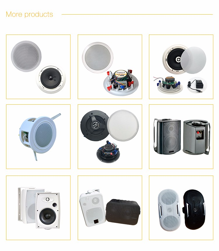 ceiling mini speaker with grille cover