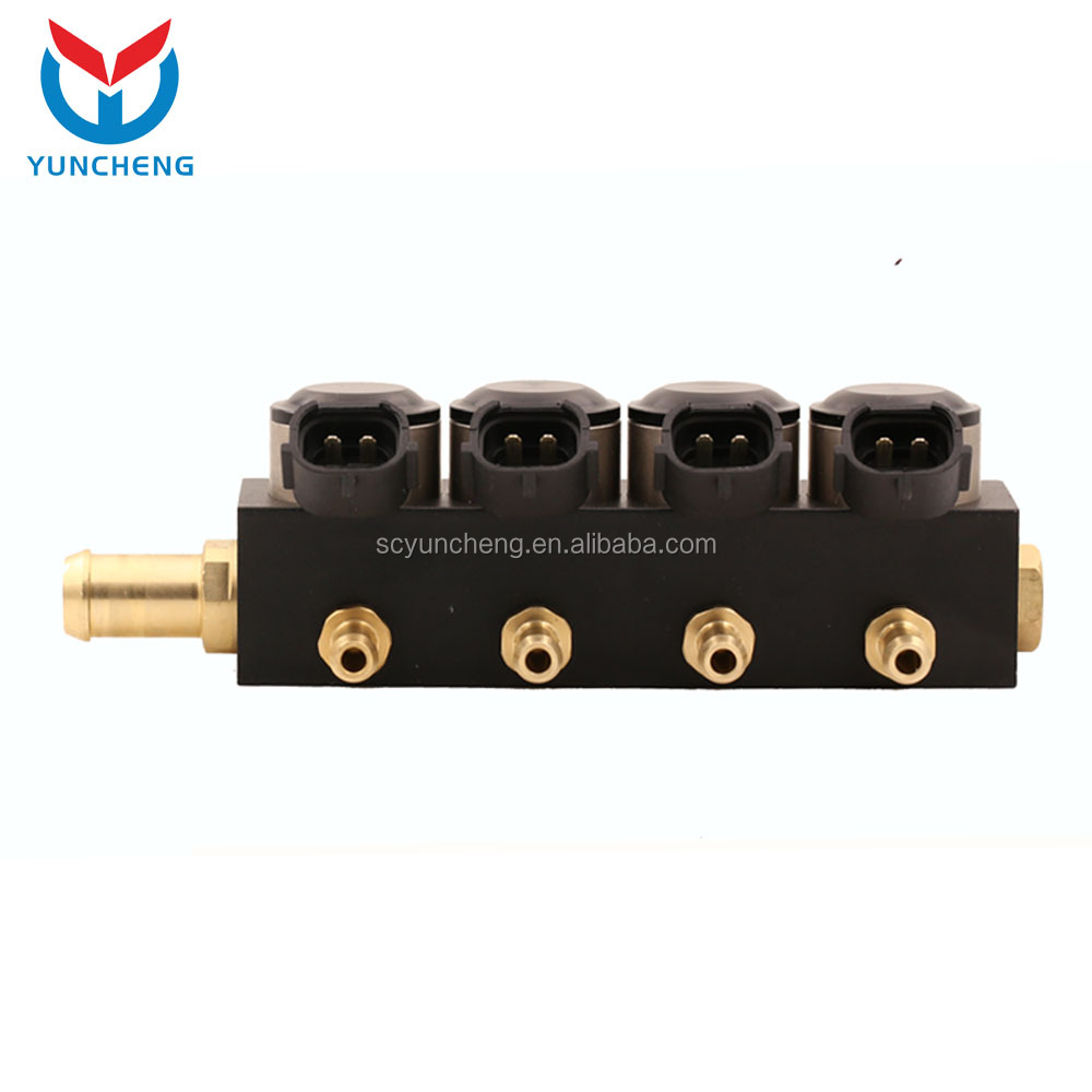 YCI04002 Car Fuel Gas Conversion Lpg Fuel Injector Rail