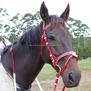 EUROPE PVC/TPU /leather horse racing bridle