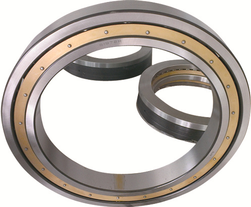 Deep Groove Ball Bearing 618/500 M 10008/500 bearing