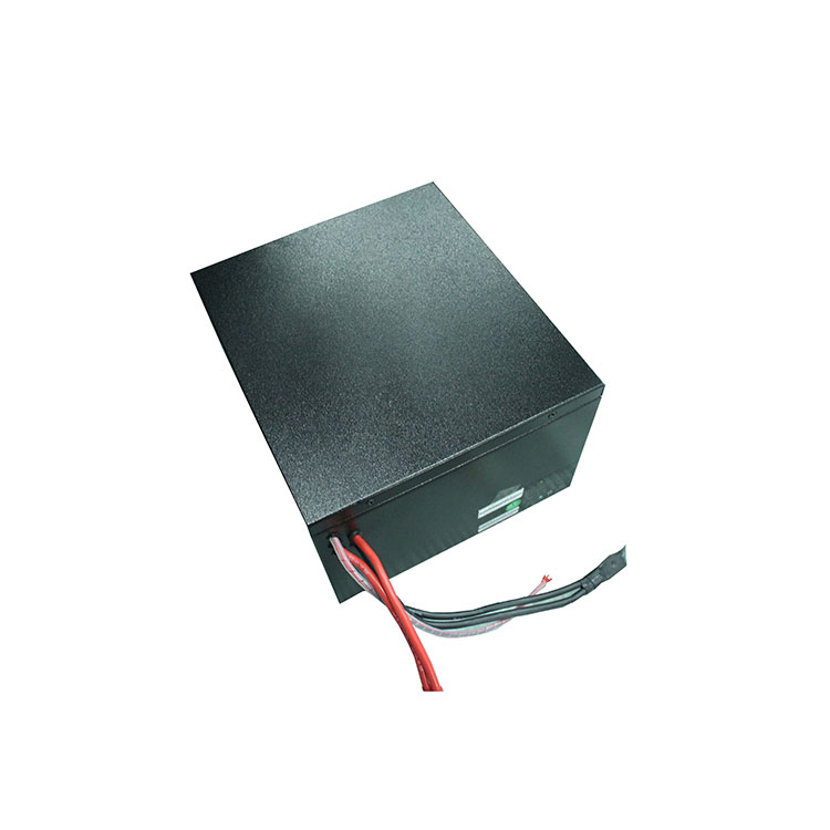 do not contain any heavy metal LiFePo4 rechargeable lithium ion battery