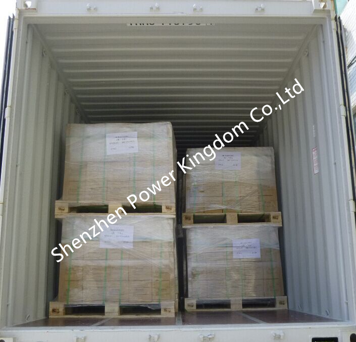 Power Kingdom 105ah agm deep cycle battery wholesale wind power systems-46