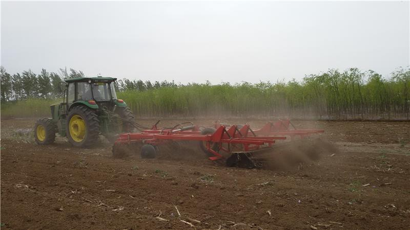 Professional 1LZ-4.2 combined land preparation harrow made in China