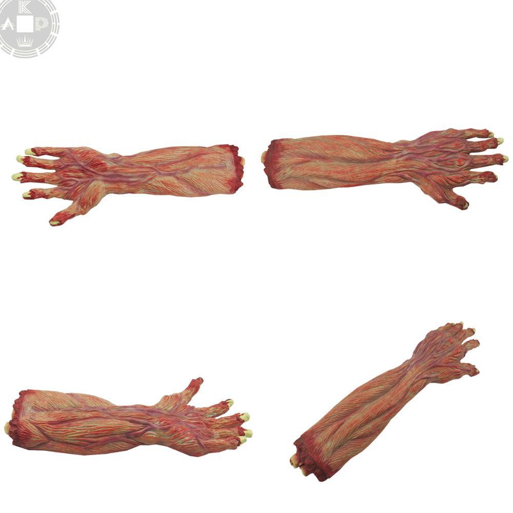 1 Kg Menschlichen Anatomie Fett Modelle Mit Tablett - Buy Fett ...