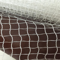 outdoor mosquito net/ agricultural bird netting/nylon anti bird netting