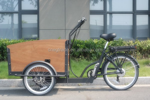"Electric cargo bike with 24"" 6 gears cheap adult tricycle/bicycle UB-9031E"