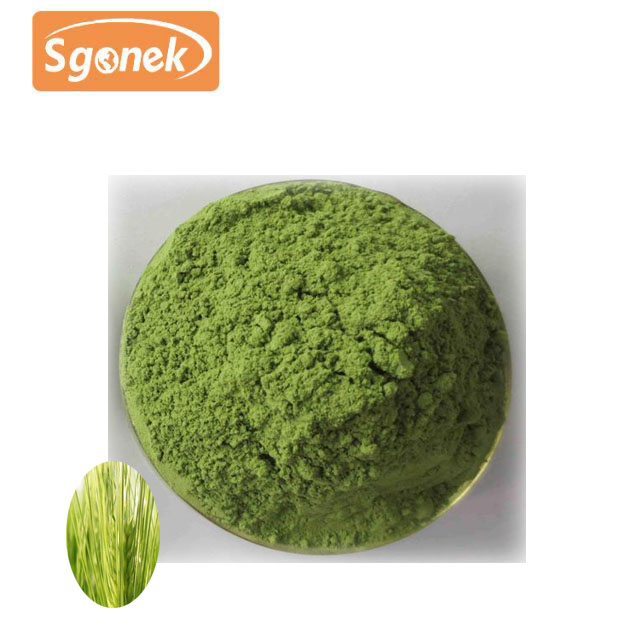 Organic Natural Wheat Grass Juice Powder Top Quality
