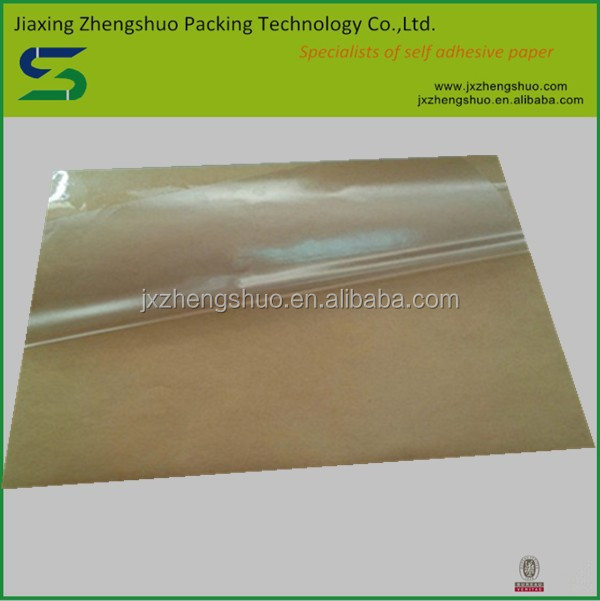 Free samples adhesive transparent pet kraft liner paper
