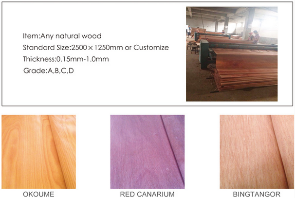 Professional maple veneer for skateboards with low price